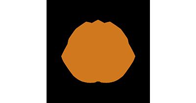 icon7-new